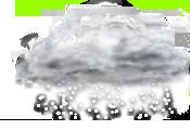 ninsoare