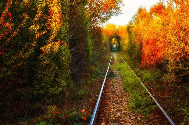 Tunelul iubirii © Alexandru Mahu